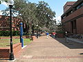 PhD in Distance Learning University of Florida